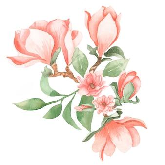 水彩の手描き緑の葉と枝と柔らかいピンクのマグノリアの花の花束イラスト。ウェディングブーケ。