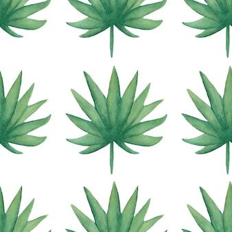 Акварель бесшовные тропических листьев шаблон. листва цифровой бумаги. экзотические цветочные оберточной бумаги. лист монстера, банановые листья зеленый альбом. рисованной иллюстрации