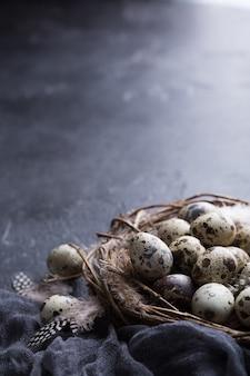 巣の中のウズラの卵