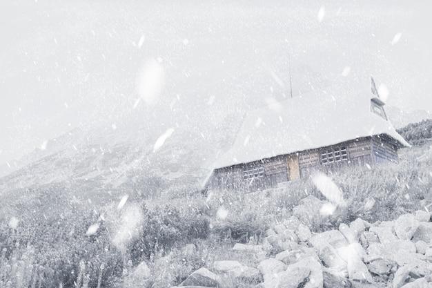 山の家と降雪コピースペース