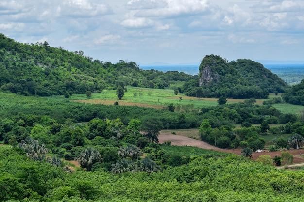 崖、石灰岩の山々や森の様々な種類の森林植物