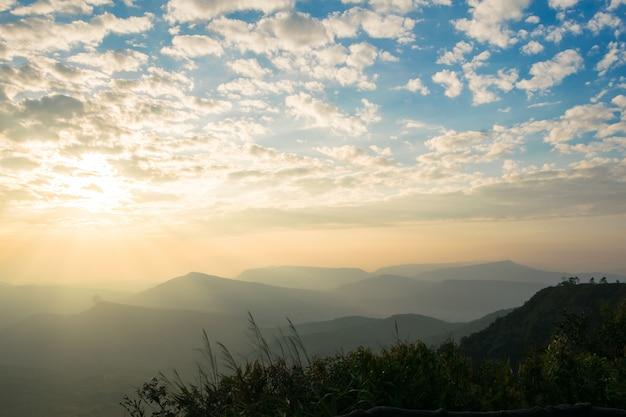 朝の空に太陽が昇る。暗い影、森、木々