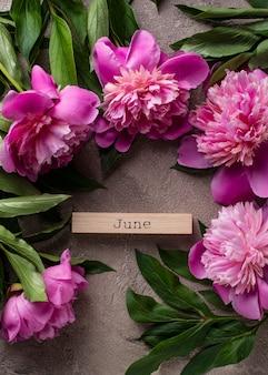 明るい面にピンクの牡丹の花