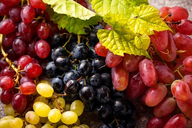 さまざまな種類のブドウの品揃え