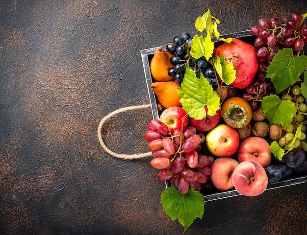 Различные осенние фрукты