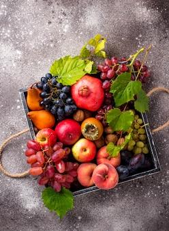 Различные осенние фрукты. концепция сбора урожая