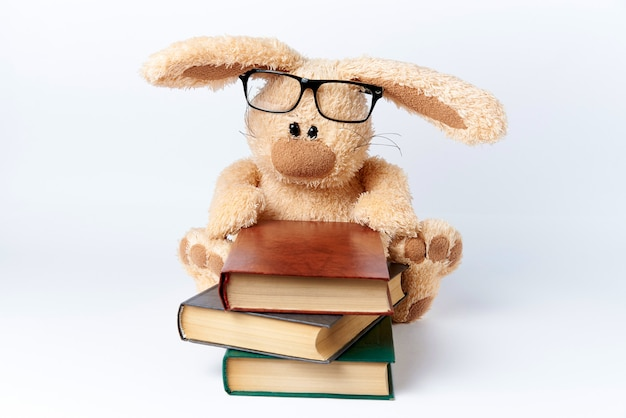 メガネのぬいぐるみうさぎが本の山に座っています。