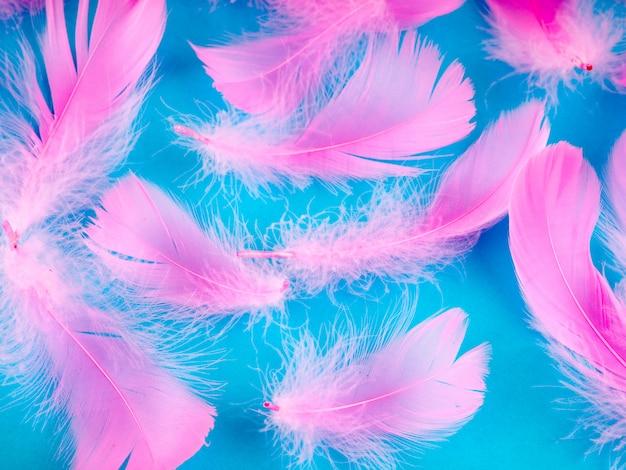 選択的なソフトフォーカスクローズアップパステルカラーのピンクの羽のテクスチャ背景