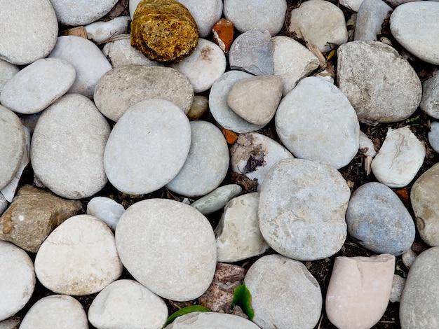 海岸の海の石