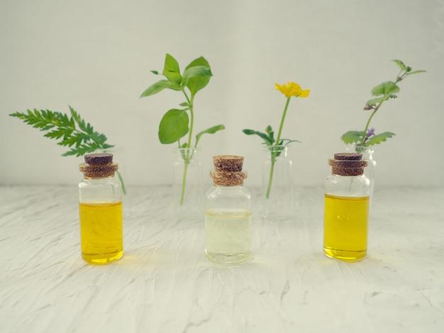 Альтернативная медицина, зеленые растения в качестве замены для таблеток, ароматерапия, эссенции и натуральные масла
