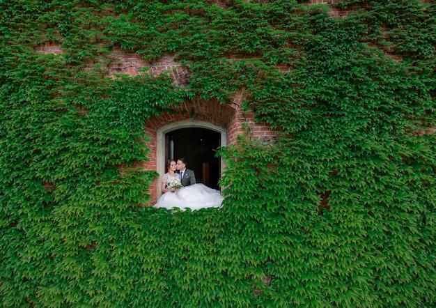 緑の葉で覆われた壁の窓の穴で結婚式のカップルがキスします。