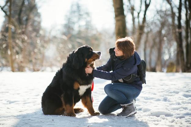 冬のコートの女性は、公園に立っているベルンマウンテンドッグを撫でる