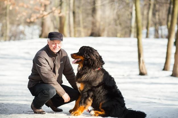 男は公園の雪の上で面白いベルンマウンテンドッグと遊ぶ