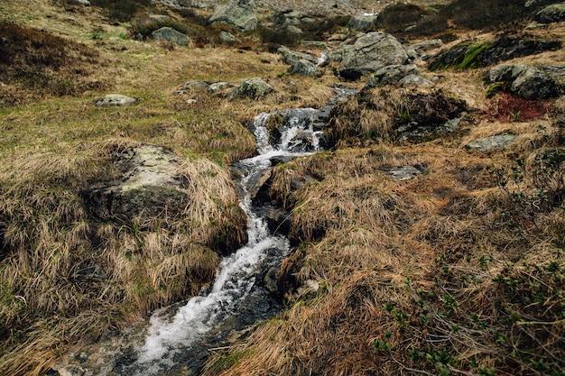 スイスアルプスの澄んだ水のあるマウンテンクリーク