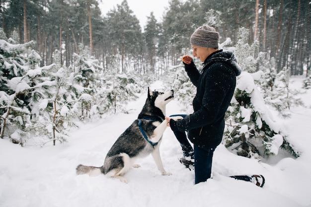 トレーニングドッグ。寒い冬の日に雪の多い冬の森でハスキー犬を訓練する男