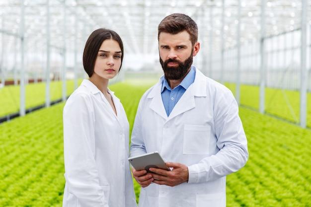 男と女は温室に立っているタブレットで働く