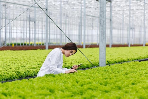 女性の研究者はグリベーンハウスで植物を勉強している錠剤を持っています