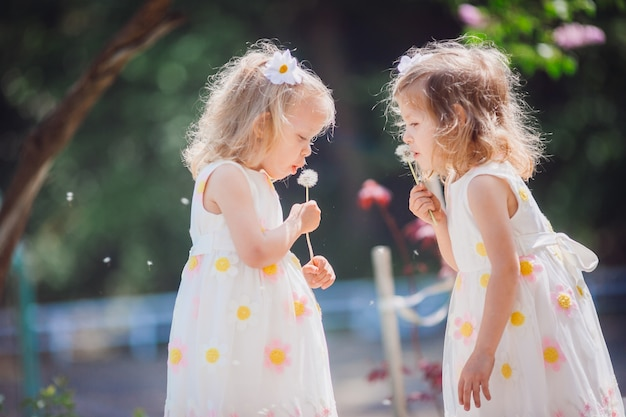 双子の女の子がタンポポを吹く