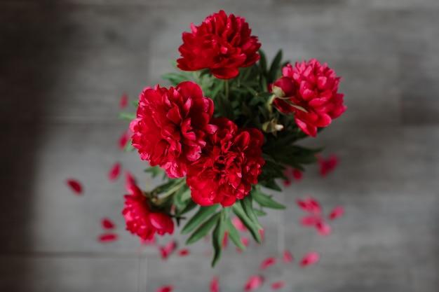 灰色の背景に隔離された赤い牡丹の花束。