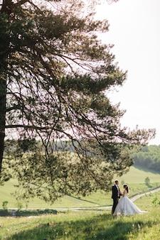 美しい花嫁は夏の木の下に立っています。