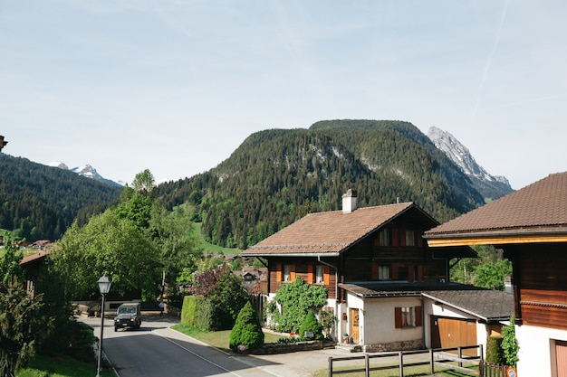 スイスの美しい春の山