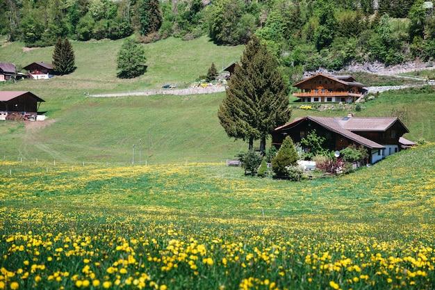 Красивая европейская деревня на зелени холма