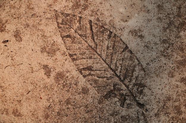 セメントの床に葉のプリント