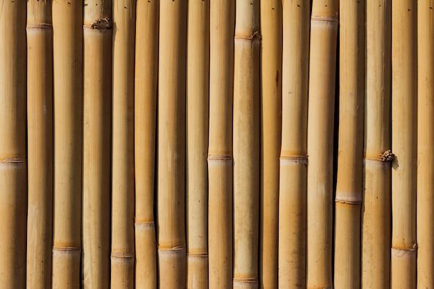 Полный кадр фона из бамбука
