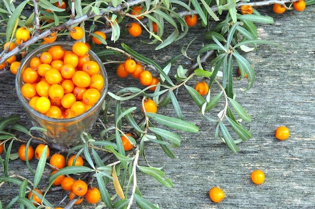 木製の背景に海クロウメモドキの果実と葉。海クロウメモドキの収穫。