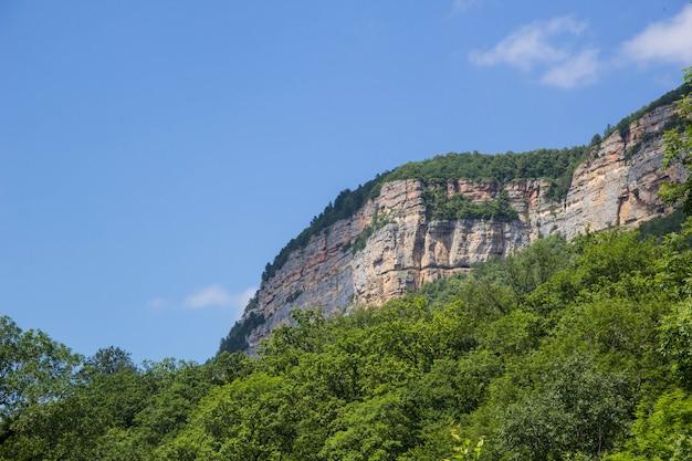 Горы и лес под голубым небом