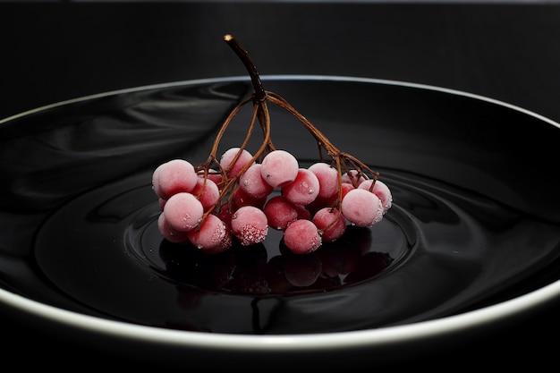 冷凍レッドガマズミ属の木の果実