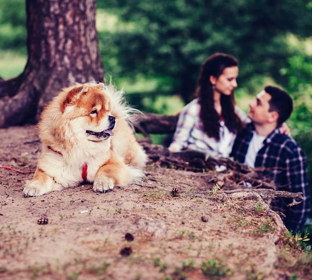 公園で彼らの犬とカップルします。
