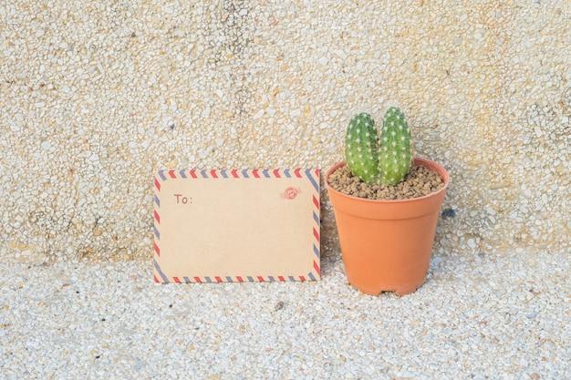 クローズアップ茶色の封筒とぼやけた石の床と壁のテクスチャに茶色の鍋にサボテン