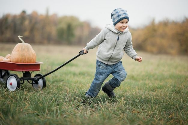 寒い秋の日にカボチャパッチに幸せな小さな幼児男の子