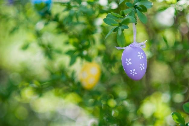 Желтые пасхальные яйца на вишневом дереве, пасхальная композиция