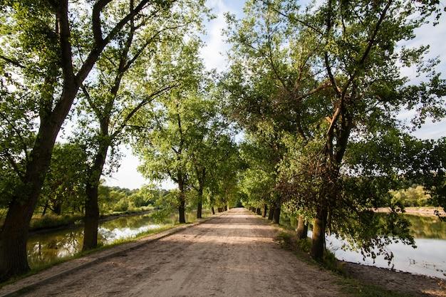 湖を通って村の道
