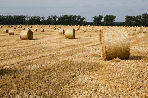 夏にわら俵と収穫されたフィールド