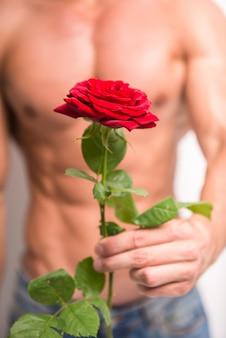 単一のバラを保持している完璧な胴体を持つ筋肉男。