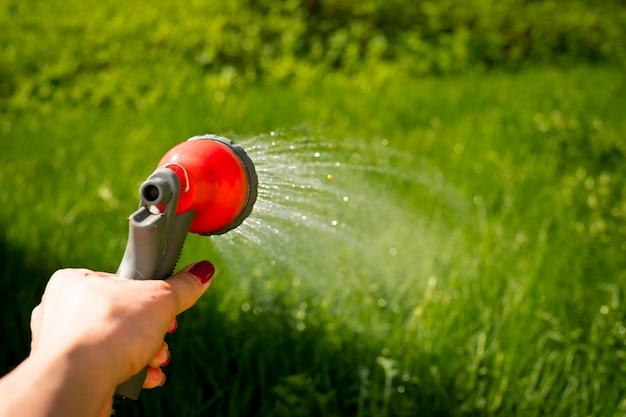 Женская рука с садовым шлангом поливает растения