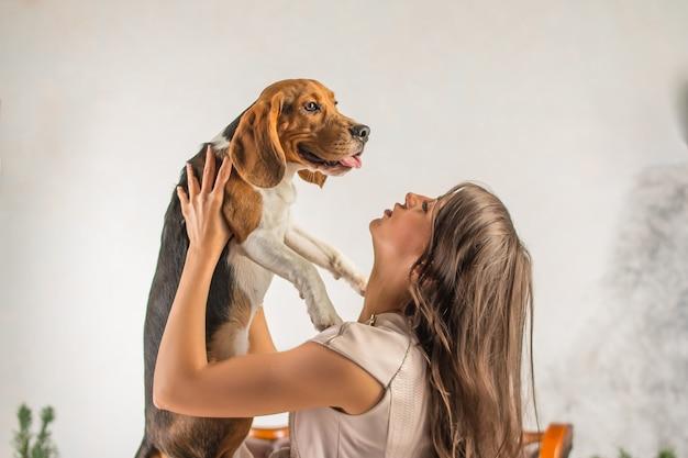 Собака в руках хозяйки. девушка играет с собакой. милый бигль расслабляющий. им весело вместе. молодая женщина сжимает собаку