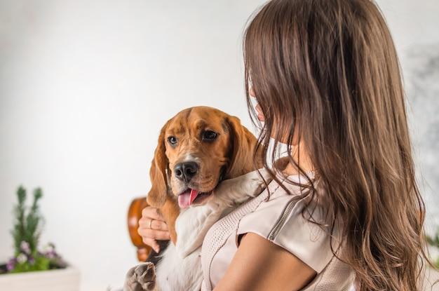 Охотничья собака смотрит в камеру. женщина играет с биглем. большая настоящая любовь к домашним животным, к собакам. девушка с длинными темными волосами и обнимает большой милый пес.