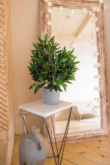 Современный интерьер с большим стильным зеркалом с тропическими растениями. расположение гостиной с элементами дизайна.