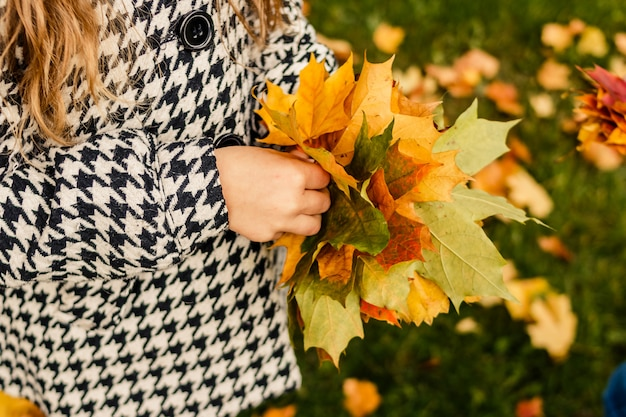 Девушка в пальто держит красивые яркие листья в две руки, маленький желтый и зеленый кленовый лист.