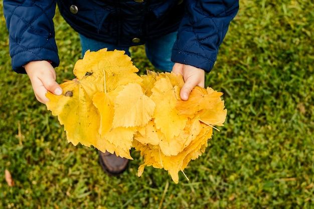 落ち葉で公園で遊ぶ子供