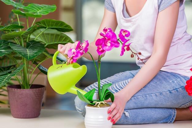 Женщина заботится о домашних растений