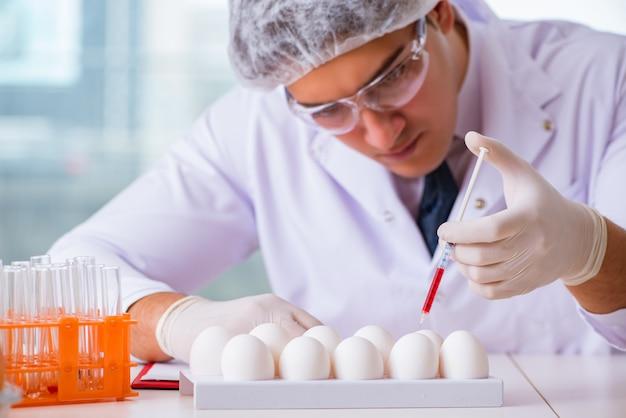 栄養専門家がラボで食品をテスト