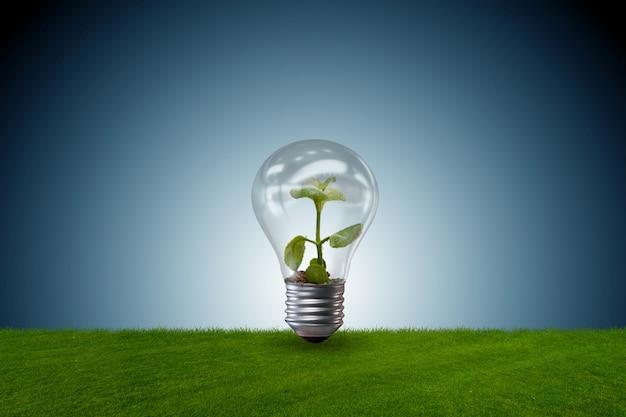 Лампочка в зеленой среде