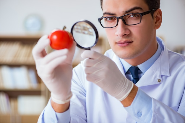 Ученый работает над органическими фруктами и овощами