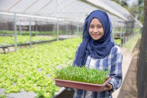 小さな植物と植木鉢を保持している女性