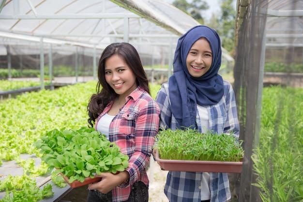 小さな植物で植木鉢を保持している女性